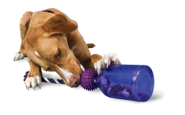 indestructible dog toys for aggressive chewers
