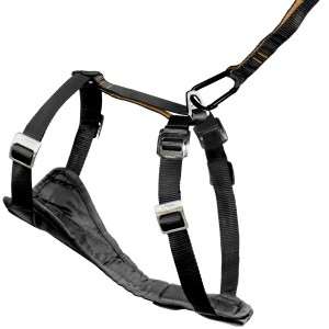 Indestructible Dog Harness