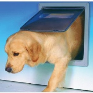 Dog Mate Large Dog Door