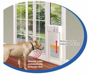 Best Dog Doors And Indestructible Dog Toy Reviews