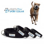 The Mighty Paw Dog Collar