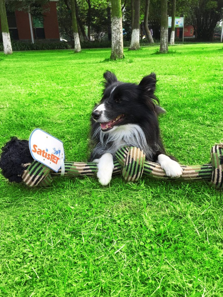 Satispet Indestructible Dog Toy