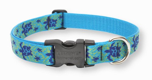 Indestructible Dog Collar - Lupine