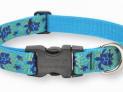LupinePet Adjustable Dog Collar