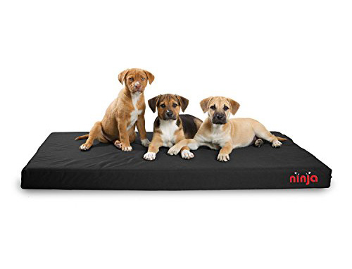 Repelz-It Ninja Bed - The Good and Bad, for heavy chewers